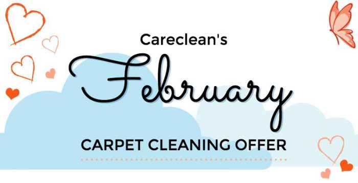 February carpet cleaning offer